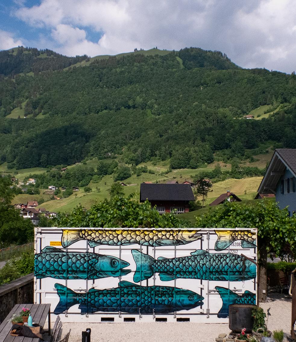 Fischcontainer front