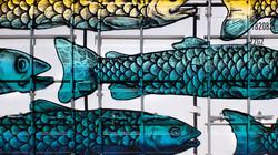 Fischcontainer closeup