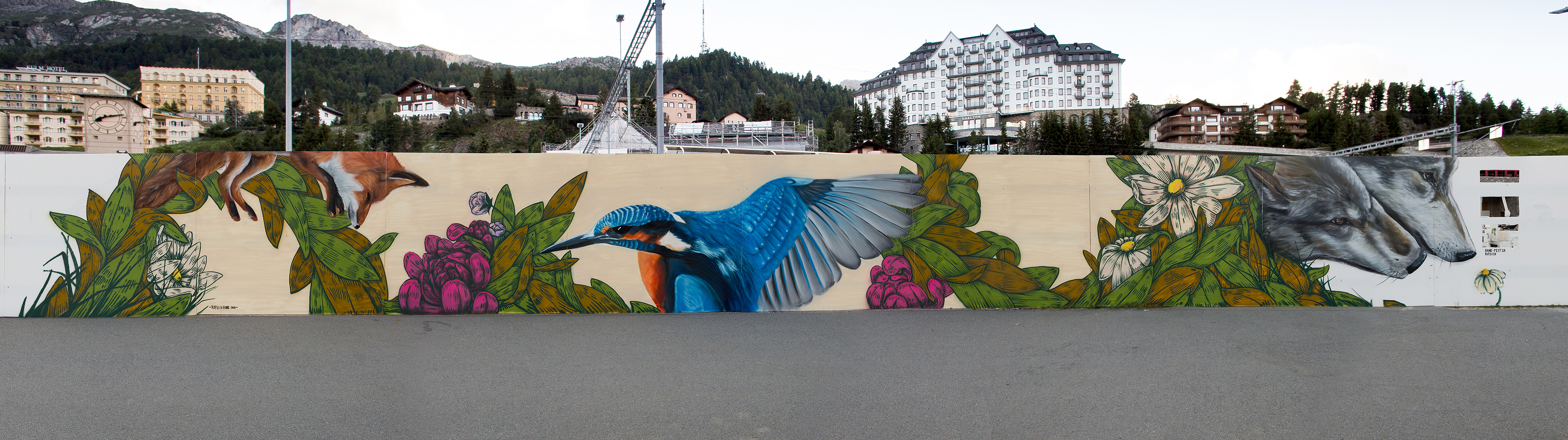 Natur in St-Moritz