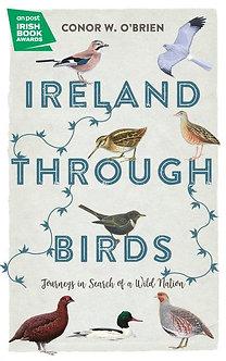 Ireland Through Birds