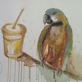 Papağan ve Smoothie