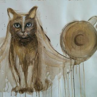 Kedi ve Cappuccino