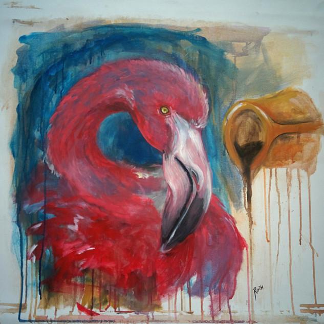 Flamingo ve Türk Kahvesi