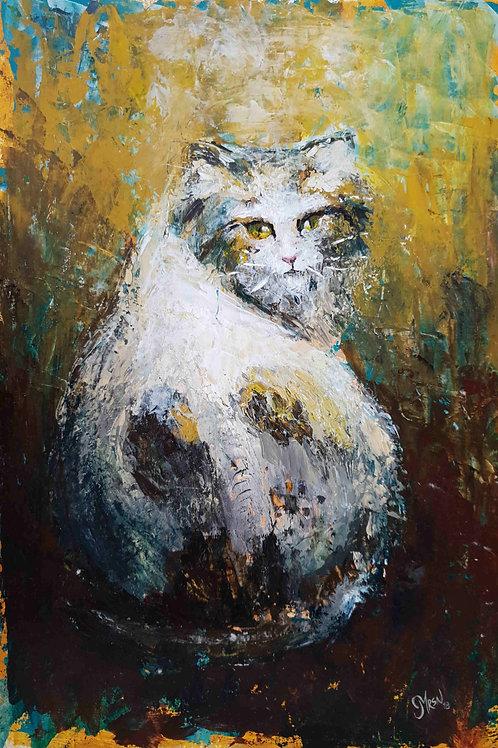 Bostancı'nın Kedisi