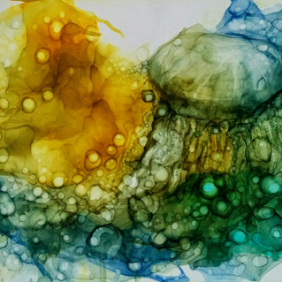 Denizanası 2