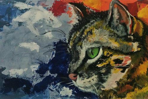 Pop Art: Renkli Kedi
