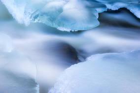 Ice petals II
