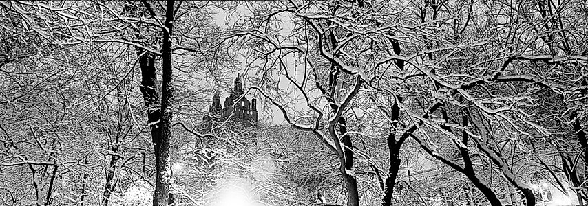 Snowstorm in Central Park Nicolas auvray