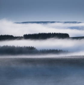 Awakening haze IV - 2021