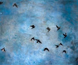 birds 20x24_ 50x75cm.jpg