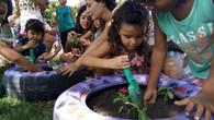 Canteiros coletivos auxiliando na recuperação de praças
