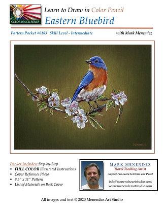 DIGITAL EasternBluebird