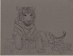 Tiger Paper.jpg