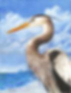 Great Blue Heron CP Best copy.jpg