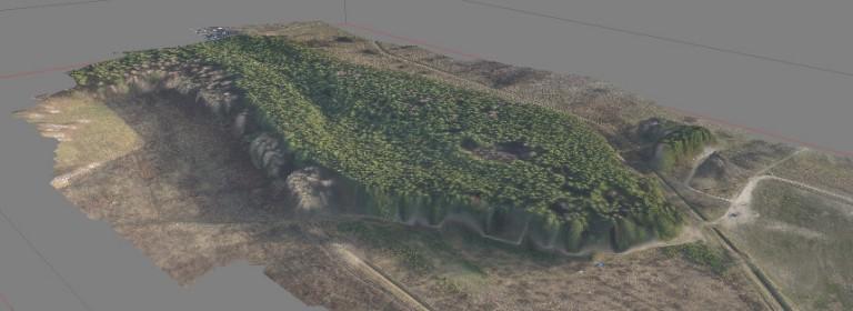 Model 3D obszarów leśnych