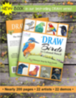 DRAW BIRDS BOOK.png