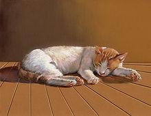 MENENDEZ Cat Nap.jpg