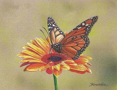 Monarch_Butterfly_Original copy.jpg