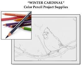 WinterCardinal Set$.jpeg