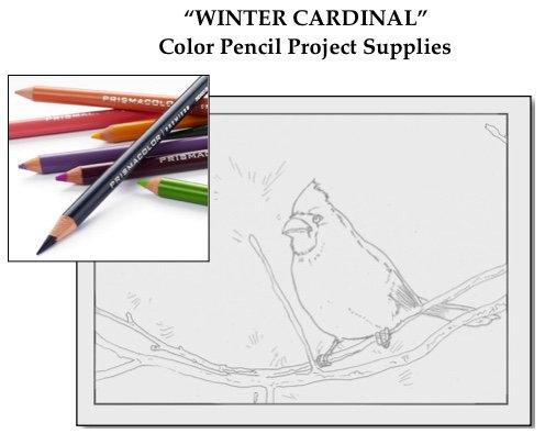 Winter Cardinal SET