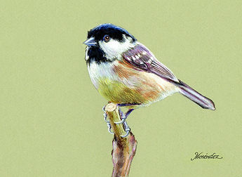 Chickadee Perfect.jpg