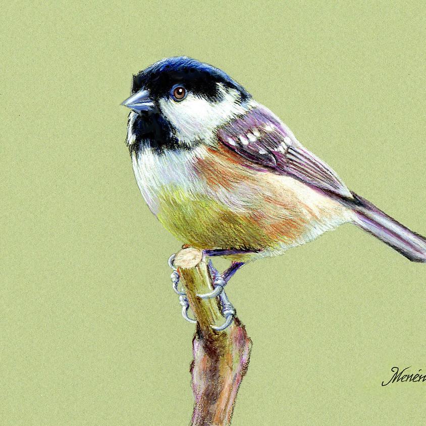 """Little Chickadee"" Watercolor Pencils"