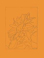 SunflowerPaper.jpg