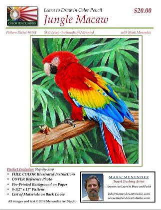 Jungle Macaw Color Pencil