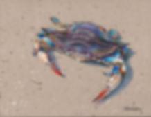 Blue_Crab copy.jpg