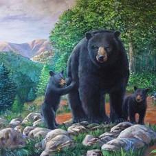 """""""Bear Family"""""""