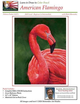 DIGITAL American Flamingo