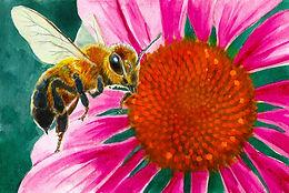 WC Pencil Honeybee.jpg