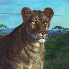 Lioness.jpeg