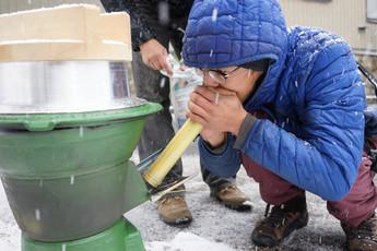 自然栽培米で生酛造り その5