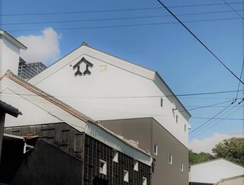 自然栽培米で生酛造り