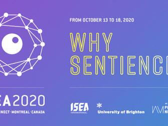 Yanjun Lyu to present at ISEA 2020