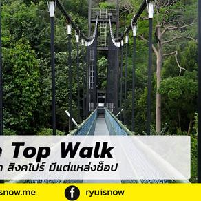 ใครบอกว่า สิงคโปร์ มีแต่แหล่งช็อปปิ้ง ลองไป Tree Top Talk สิ