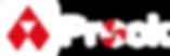 Logo Aprock Weiß-Rot.png