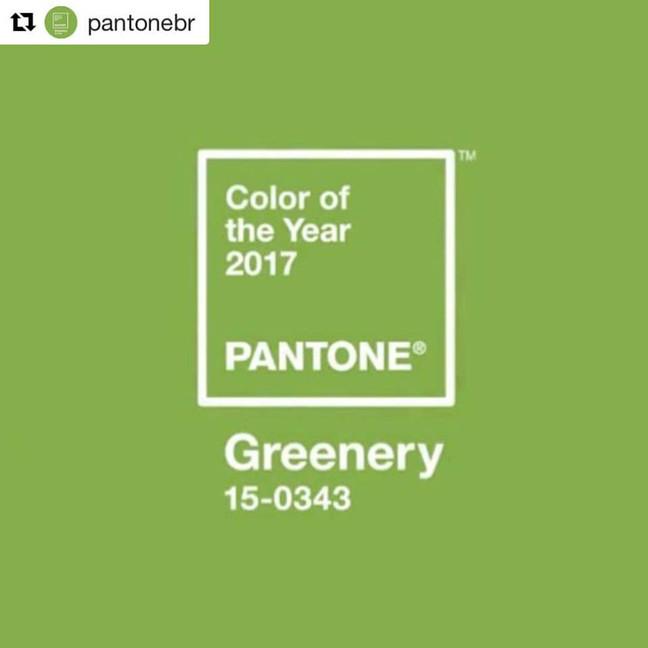 """A REFRESCANTE """"COR DO ANO"""" DE 2017 DA PANTONE"""