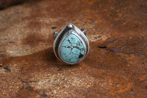 Indian Ocean Ring