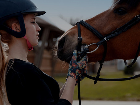 How to develop a bond with a horse