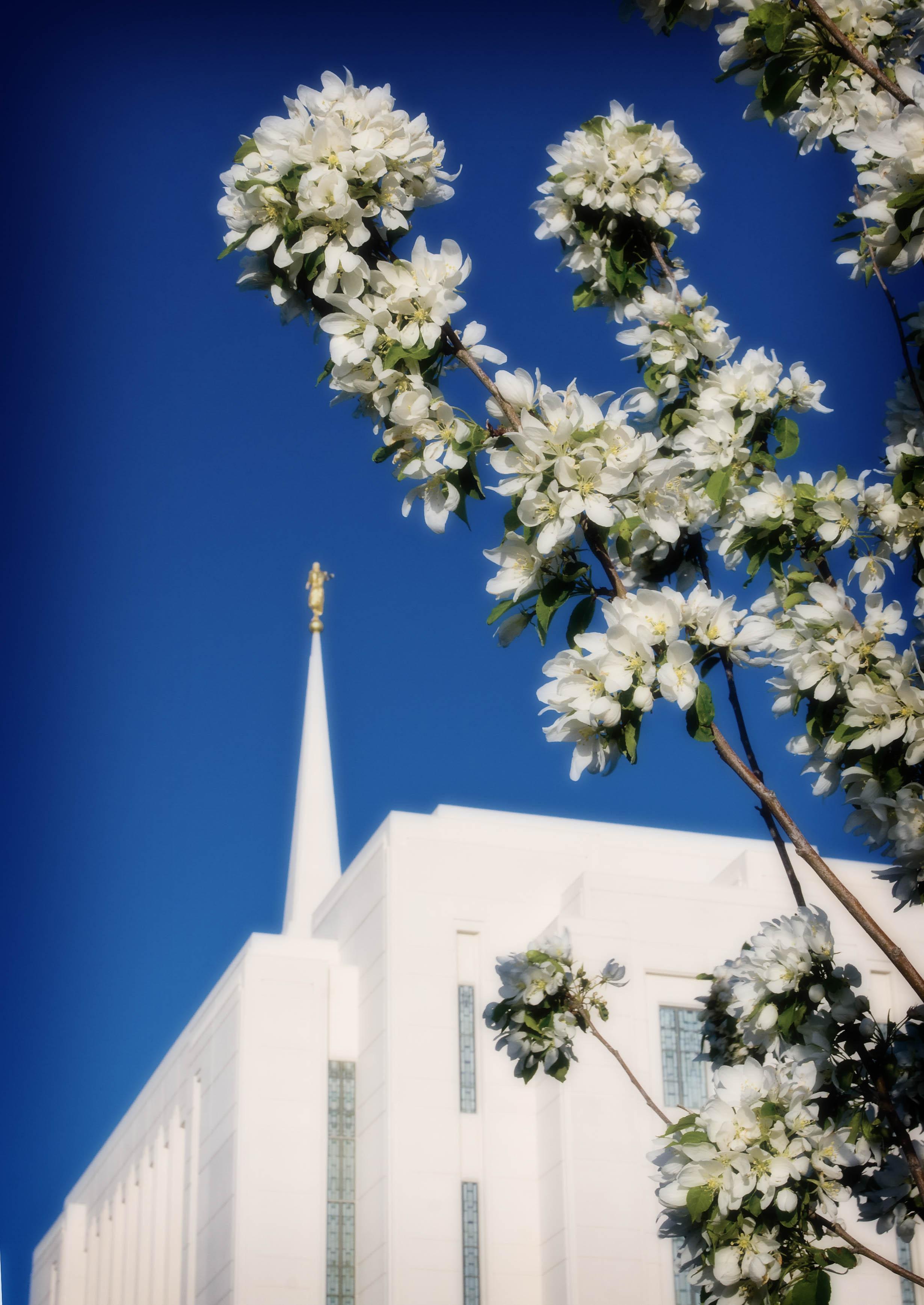 Rexburg Idaho Temple High Contrast