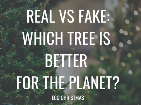 Real VS Fake - Which tree is better for the planet?!