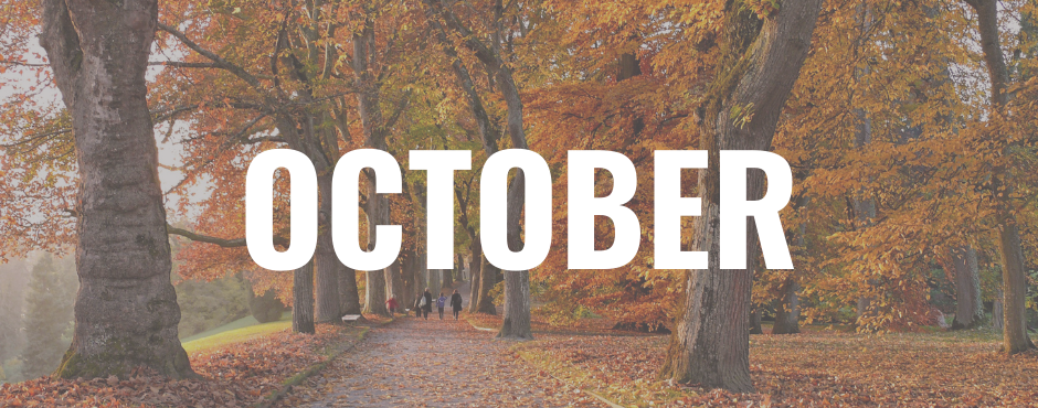 October - How to make the rest of your year more sustainable