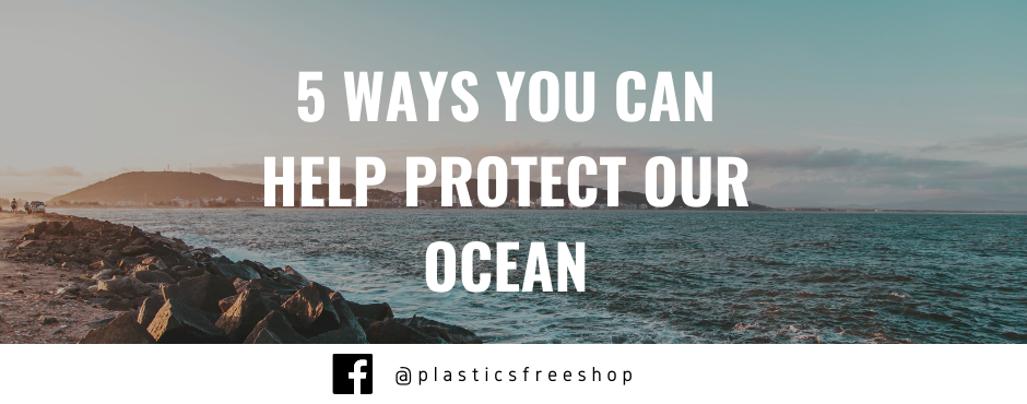 5 ways you can help protect our oceans
