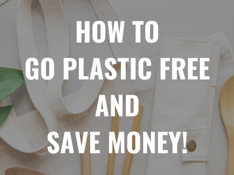 How To Go Plastic Free AND Save Money!