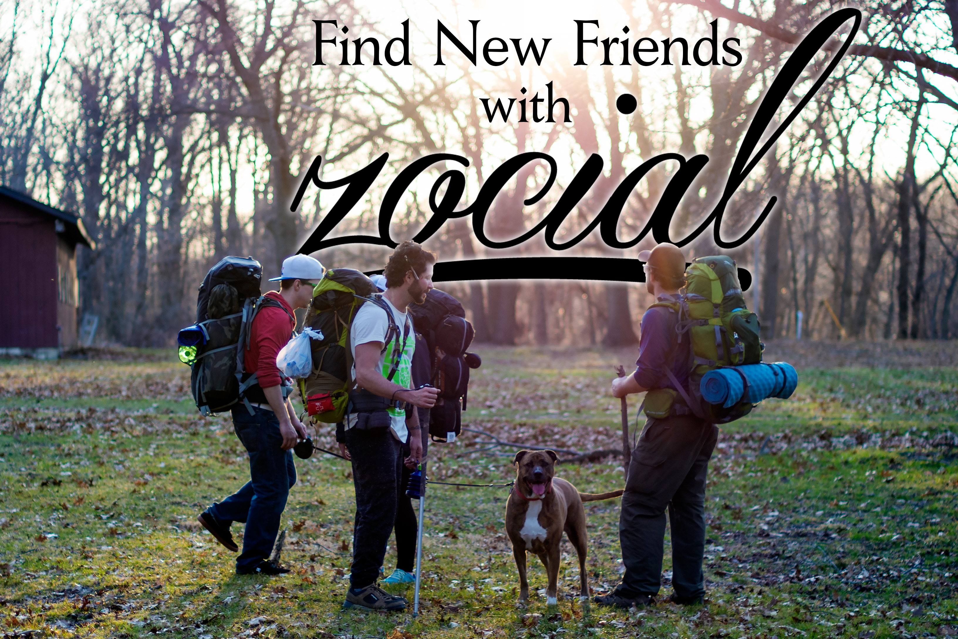 Zocial Social Media 7