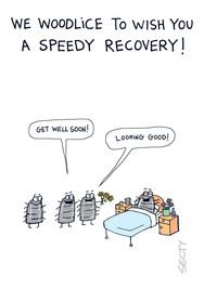SILLY INSECTS SI0121 SPEEDY RECOVERY .jp