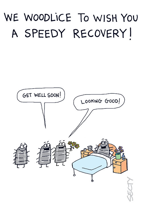 Silly Insects - Speedy Recovery