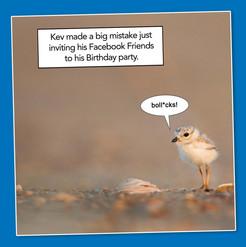 Facebook Friends.jpg